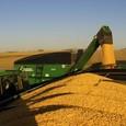 Model 839 Grain Cart Unloading