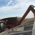 Parker 1042 Unloading