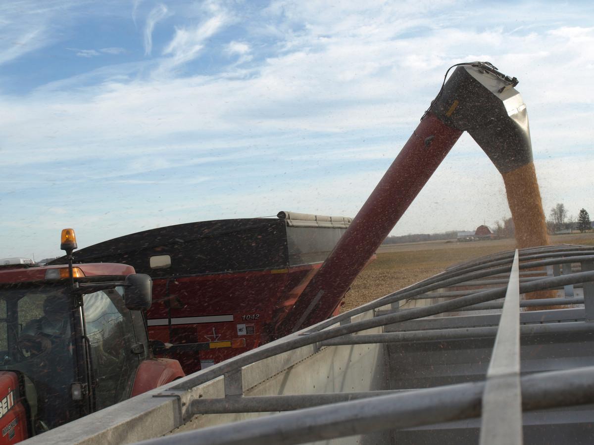 42-Series Single Auger Grain Carts - Parker Equipment